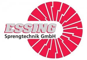 Logo EST original